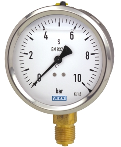 Pressure gauge with filling liquid - model 213.53