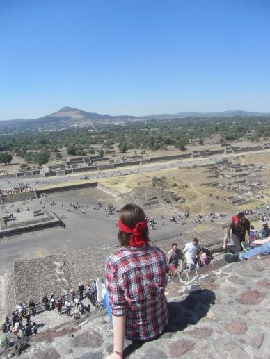 Hola México! - Studieren in Mexiko