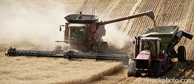 Scherstab und Biegestab in der Agrarindustrie